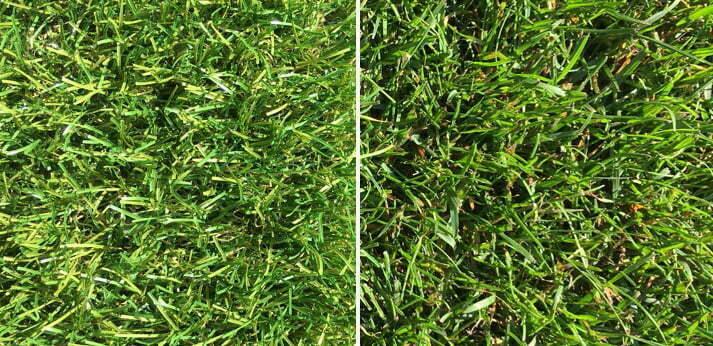 Kunstgras en echt gras