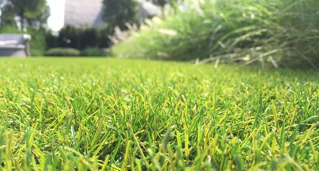 Royal Grass Sense kunstgras